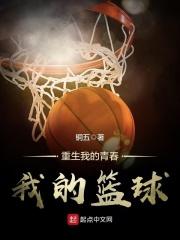 重生我的青春我的籃球