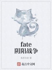 fate阴阳战争