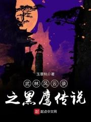 武林风云录之黑鹰传说