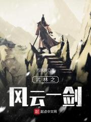 武林之风云一剑