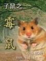 子鼠之霉鼠