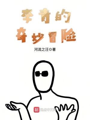 李青的奇妙冒險