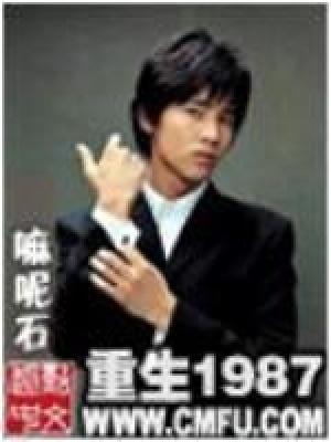 重生1987